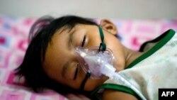 Seorang bocah laki-laki yang terinfeksi demam berdarah dengue di rumah sakit Quirino, Manila. (AFP/Nicolas Asfouri)