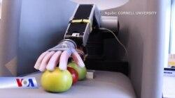 Phát minh đột phá: robot có xúc giác
