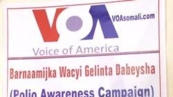 Dood Wacyigelinta Dabeysha ee Baydhabo