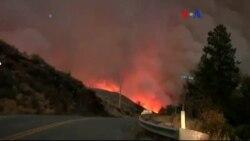 ABD'de Orman Yangınları Can Alıyor