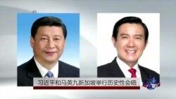 习近平和马英九新加坡举行历史性会晤