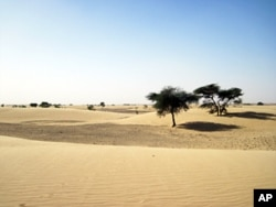 Mauritanian landscape. The photo was taken on a field trip to Mauritania led by Jan-Berend Stuut in November 2009.
