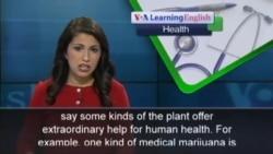 Marijuana Could Be an Effective Epilepsy Treatment