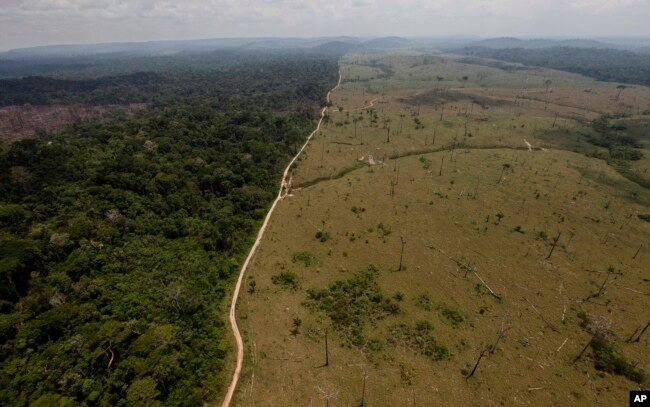 FILE - This Sept. 15, 2009 file photo shows a deforested area near Novo Progresso in Brazil's northern state of Para.