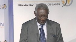 Former Ghana President to Lead Global Fight Against Tropical Diseases