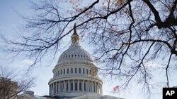 11月19日华盛顿深秋阳光下的美国国会大厦