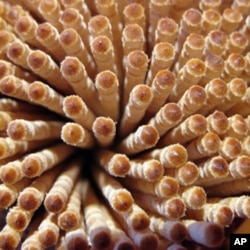 Toothpick manufacturing is not a big part of the nation's gross national product. But several companies - including some in Wisconsin, in or close to its many lumber plants - make them.