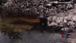 壳牌石油被控清理尼日利亚石油泄漏不力