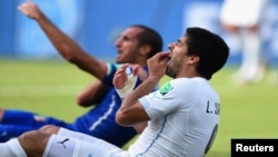 """Fifa said Suarez and the Uruguayan soccer association had until 5 p.m. Brasilia time (2000 GMT) on Wednesday to """"provide their position and any documentary evidence they deem relevant"""". (Reuters)"""