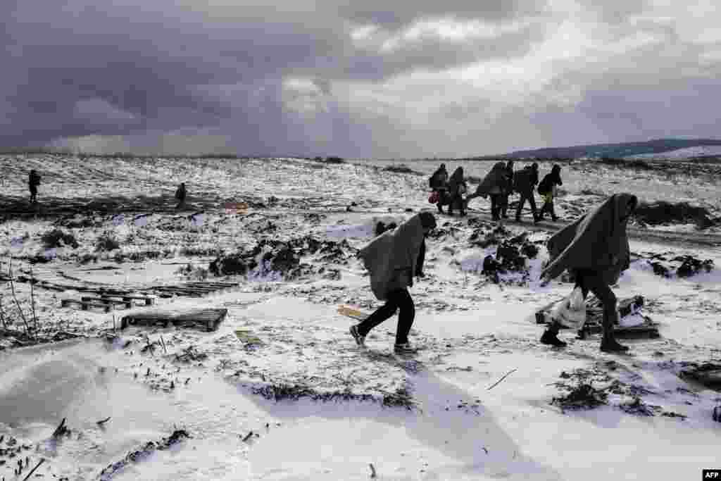 Migrants and refugees use their sleeping blankets to keep warm as they walk along snow covered fields after crossing the Macedonian border into Serbia, near the village of Miratovac.