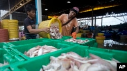 FILE - Migrant workers separate freshly caught fish by size at a fish market in Samut Sakhon Province, west of Bangkok, June 20, 2014.