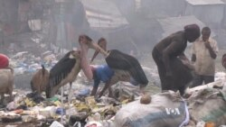 Scientists Study Slums for Signs of Spreading Superbugs