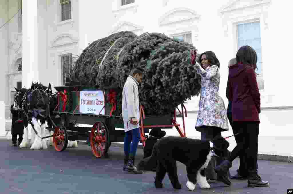 First lady Michelle Obama and daughters Sasha and Malia welcome the Official White House Christmas Tree to the White House.