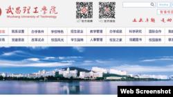 武昌理工学院 (网站截图)