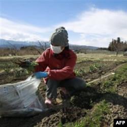 Ozračena dvojica radnika iz Fukušime