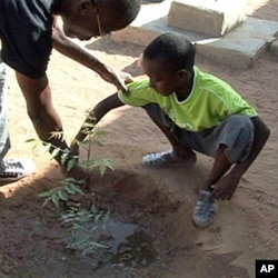 A teacher shows a student how to tend a newly planted tree