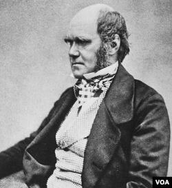 Charles Robert Darwin (1809-1882), ilmuwan Inggris yang memperkenalkan teori evolusi (foto: dok).