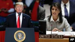 Tổng thống Mỹ Donald Trump và đại sứ Mỹ tại Liên hiệp quốc, Nikki Haley