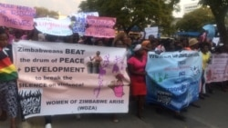 Report on WOZA Demonstration Filed By Thomas Chiripasi