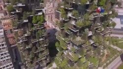 ՀԱՅԱՑՔ ԱՄԵՐԻԿԱ. Ստելլա Գրիգորյան՝ յուրօրինակ քաղաքներ