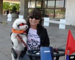 残障人士带着小狗参加活动