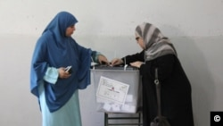 Egypt Voting School Series