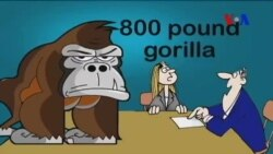 Animal ကို အေျခခံတဲ့ အီဒီယံအသုံးမ်ား ...