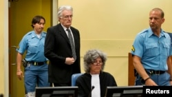 FILE - Bosnian Serb wartime leader Radovan Karadzic appears in the courtroom for his appeals judgement at the International Criminal Tribunal for the Former Yugoslavia at The Hague, July 11, 2013.