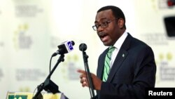 Nigeria's Minister of Agriculture Akinwunmi Adesina addresses the 19th Nigerian Economic Summit Group meeting in Abuja, Sept. 3, 2013.