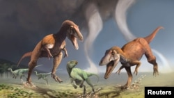 This illustration shows two Cretaceous Period predatory dinosaurs named Gualicho shinyae hunting smaller bipedal herbivorous dinosaurs in northern Patagonia 90 million years ago.