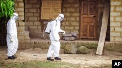 FILE - A healthcare worker in protective gear sprays disinfectant around the house of a person suspected to have the Ebola virus in Port Loko Community, situated on the outskirts of Freetown, Sierra Leone, Oct. 21, 2014.