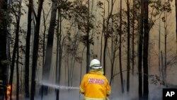 Seorang petugas pemadam kebakaran berupaya memadamkan api di kawasan Tomerong, Australia, 8 Januari 2020.