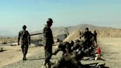 Afg'oniston kelajagi, qo'shni davlatlar roli/Afghanistan's future