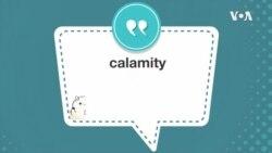 学个词 ---calamity