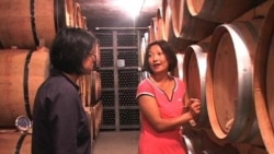 Chinese Work to Improve Domestic Wine Industry