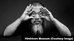 Nghệ sĩ Trung Quốc Ngải Vị Vị.