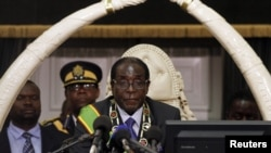 Zimbabwean President Robert Mugabe opens the country's Parliament in Harare, October 30, 2012.