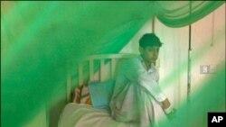کراچی میں ڈینگی بخار کے خطرے میں اضافہ