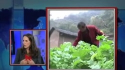 VOA卫视(2013年11月8日 第二小时节目)
