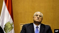 Tổng thống lâm thời của Ai Cập Adly Mansour