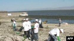 Përpjekje për mbrojtjen e Liqenit të Shkodrës nga ndotja