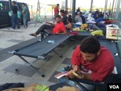 Avusturya'da devletin sağladığı barınaklarda uyumayı reddeden mülteciler