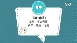 学个词 - tarnish