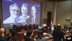 د ٢٠١٩ کال د طب نوبل جایزه دوه امریکایي او یو بریتانوي ډاکټرانو وگټله