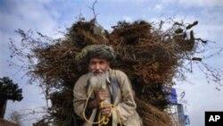 افغانستان کې زراعتي پرمختګ شوی خو د امنیت پرمختګ ناڅرګند دی
