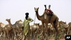 圖阿雷格族居住在撒哈拉沙漠東部(資料圖片)