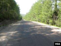 后貝加爾地區的森林。(美國之音白樺拍攝)