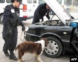 特警带警犬对记者车辆进行安检