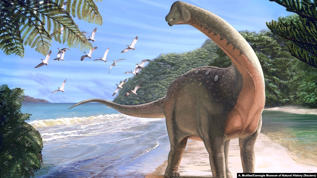 Image result for Rare dinosaur discovery in Egypt could signal more finds