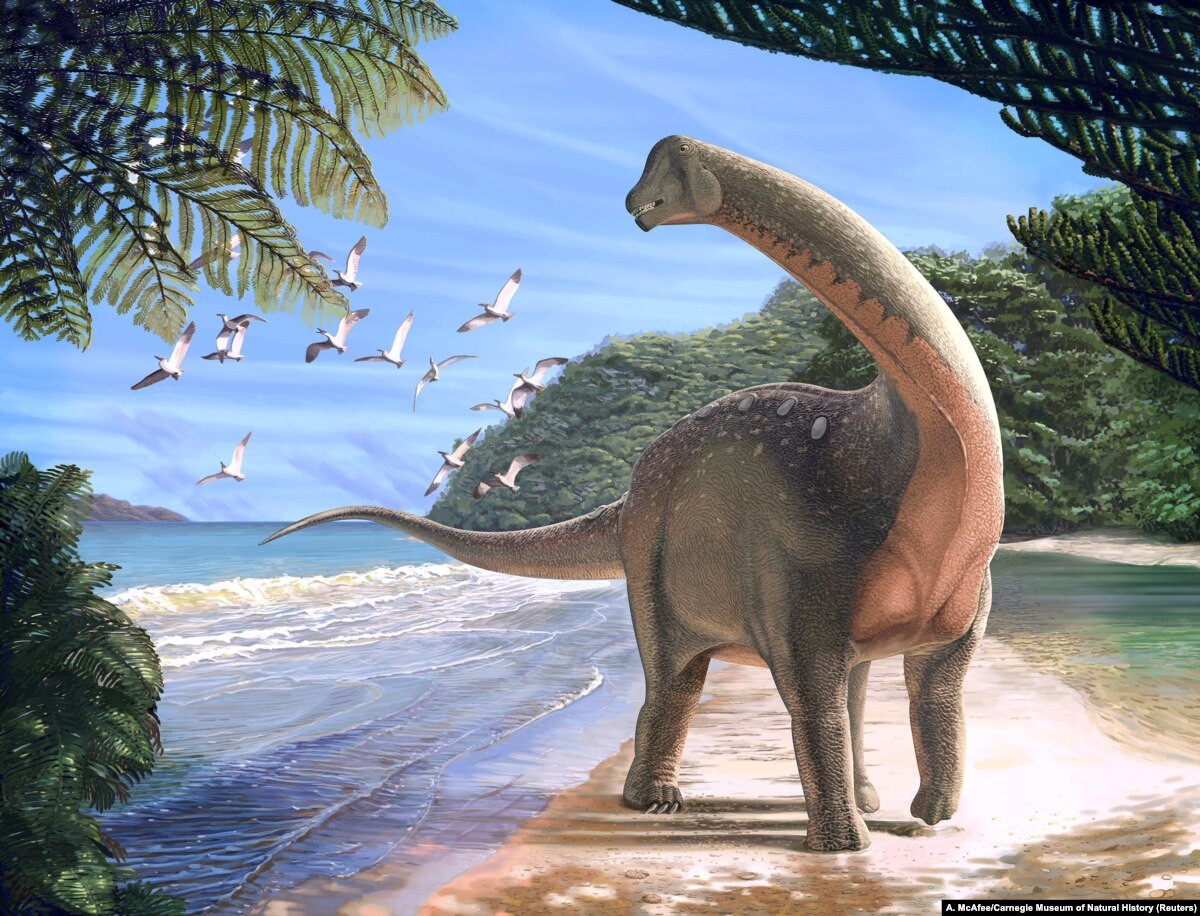 Students 'Make History' with New Dinosaur Find in Egypt